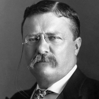 Theodore Roosevelt the President in the 60 congress.